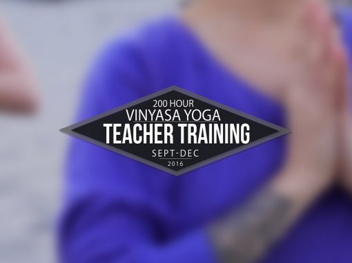 Teacher Training Promo Video